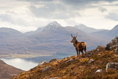10 Reasons Why Everyone Should Visit the Highlands