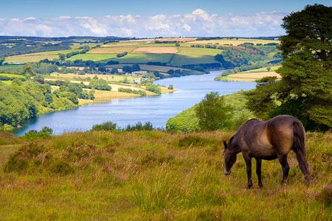 Exmoor near Wales