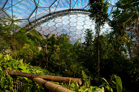 Eden Project - Cornwall gardens